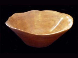 elegant neo-tropical hardwood organic bowl