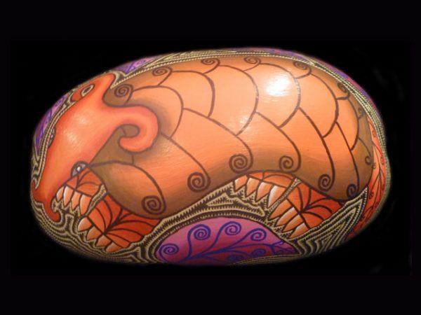 mystic armadillo jicara Maleku tribe Costa Rica
