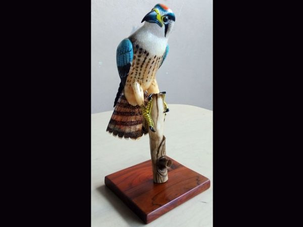 isthmian falcon hyper-realistcally carved and inked tagua nut indigenous art Panama