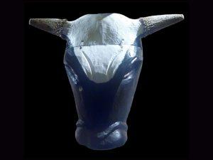 Toro Mask 0001