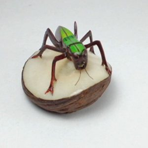 Carved Tagua Insect 0002