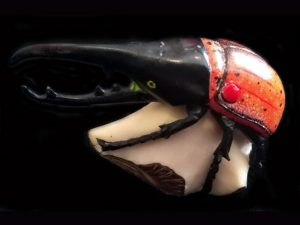 Carved Tagua Insect 0005 SOLD