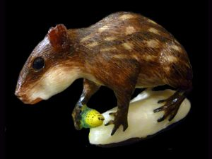 Carved Tagua Mammal 0007