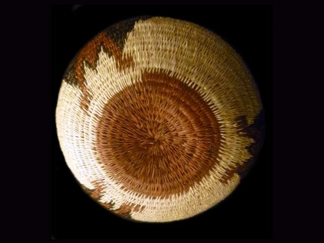 Flora and Fauna Basket 013